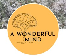 A wonderful mind logo